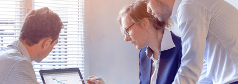 employees managing an IT project
