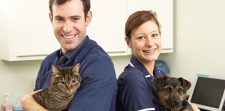 veterinary assistant training