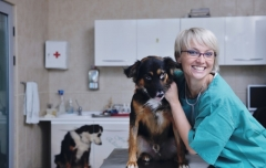veterinary assistant careers